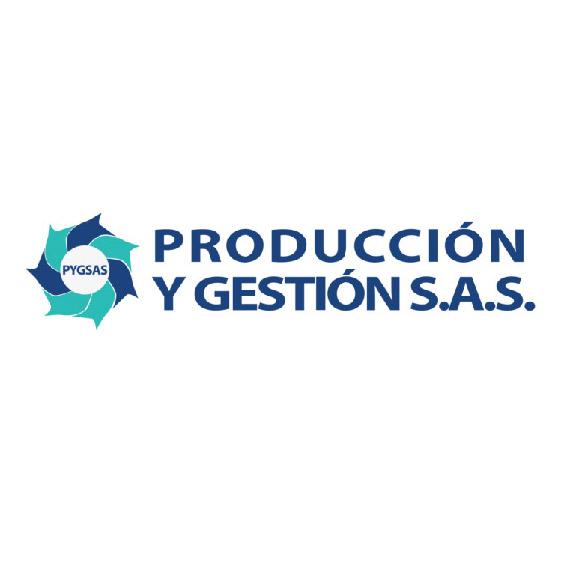 produccion y gestión sas-01-01